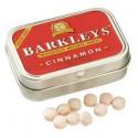 Barkleys cinnamon Sugarfree 15gr x1 (Q12)